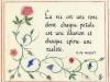 De Musset - Rose 1