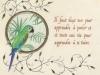 Perroquet - Parler
